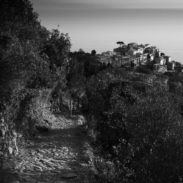 road to corniglia i