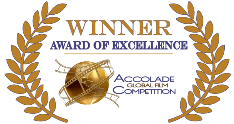 Accolade-Excellence-colorful1-1024x543.png