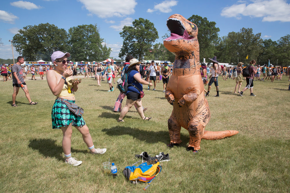 People of Bonnaroo.jpg