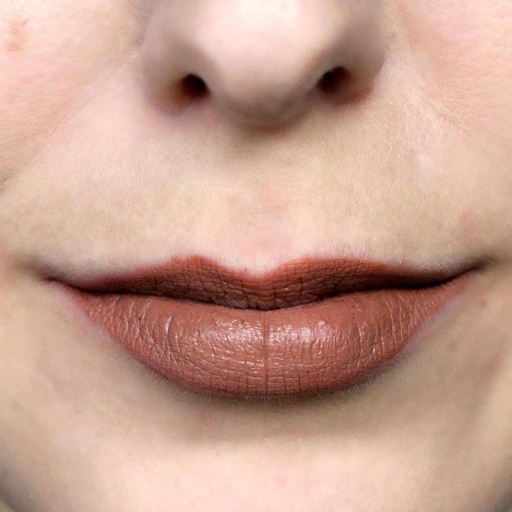 Make Up For Ever Artist Liquid Matte Lipstick in 107.