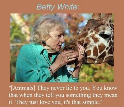 BW 6 - Animals