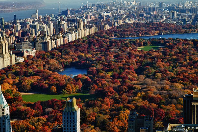 fall new york.jpg