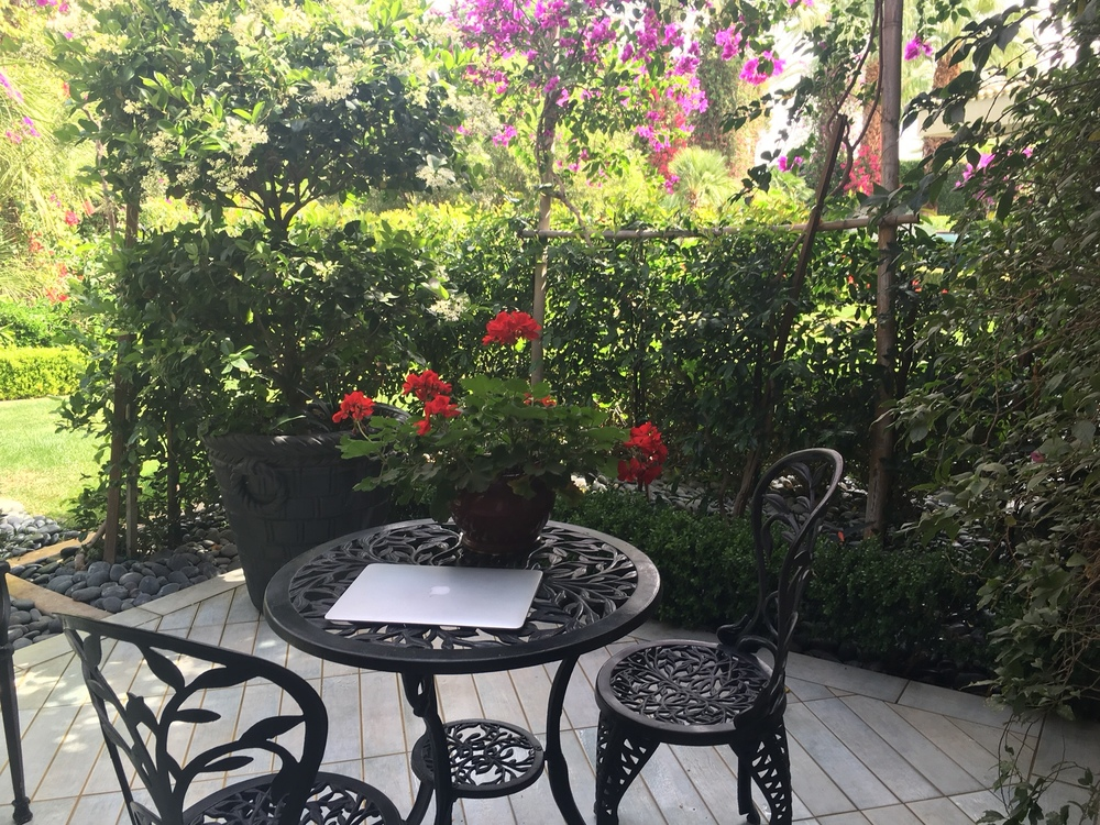 "My ""writing"" terrace"