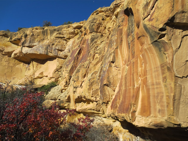 Ancient writings and cliffs Sego Canyon