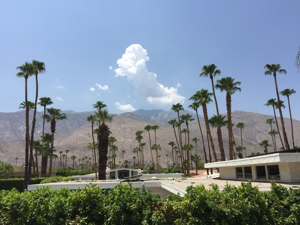 Palm Springs. Hot!