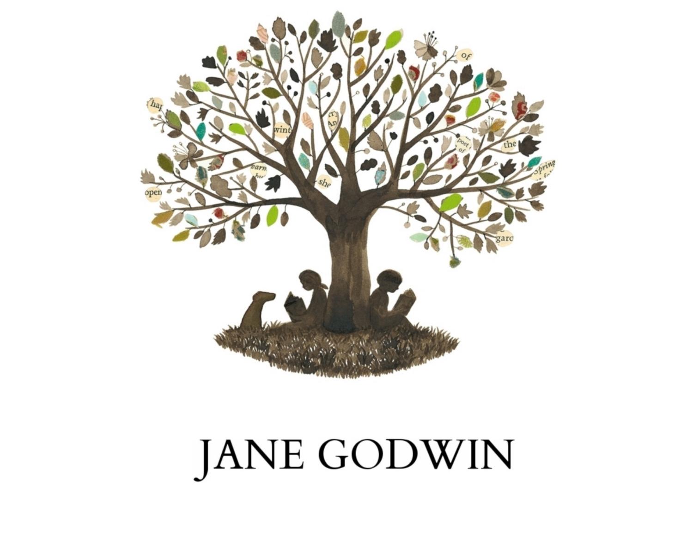 Falling From Grace  Jane Godwin
