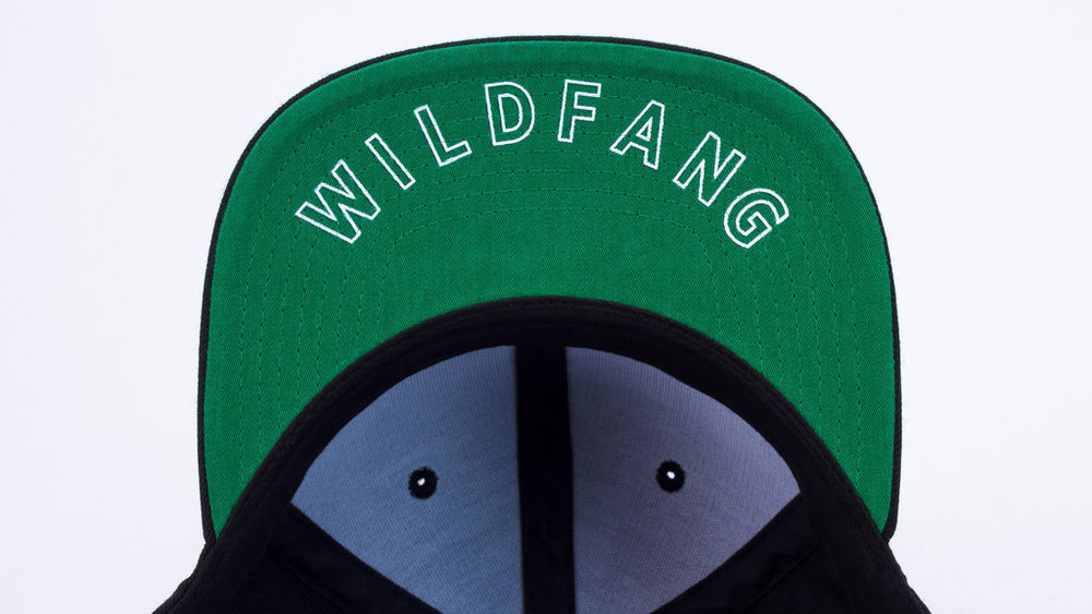 $34 wildfang-snapback-5.jpg