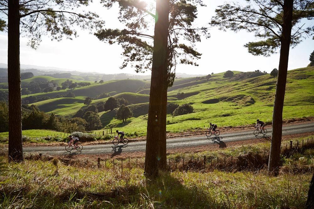 Cycle race, Matakana, New Zealand