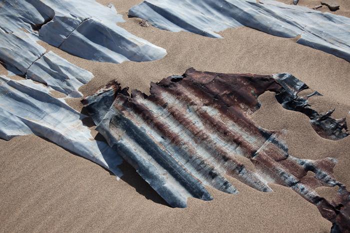 Sperrgebiet-Namibia-0187.jpg