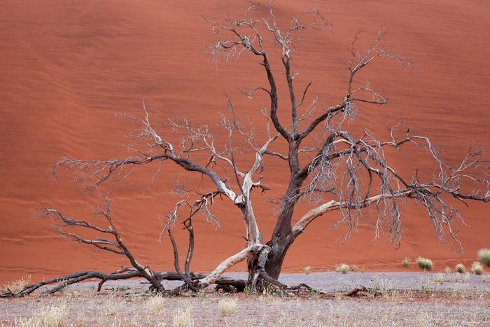 Sossusvlei-Namibia-0640.jpg