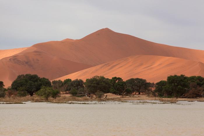Sossusvlei-Namibia-0739.jpg
