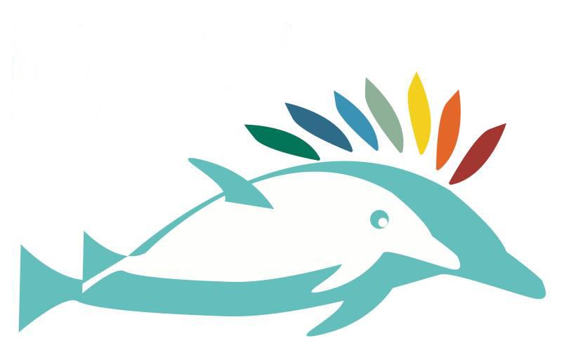 Kids dolphin camp voltagebd Images