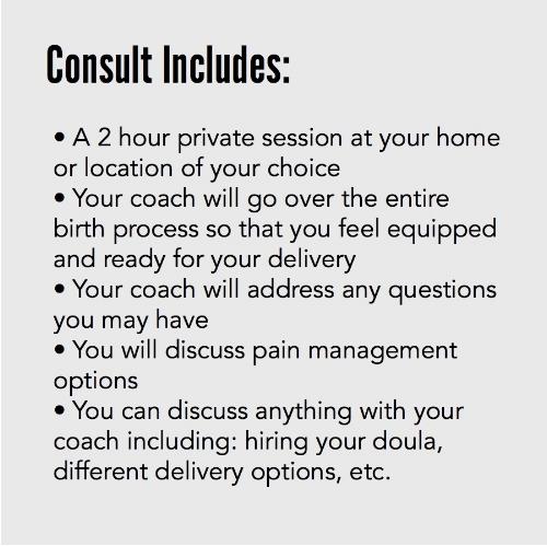 fdhq cb 101 consult includes.jpg