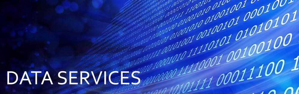 Data Services Banner.jpg