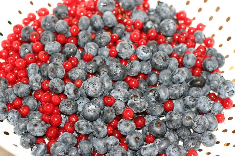 blueberrycurrantmuffins1