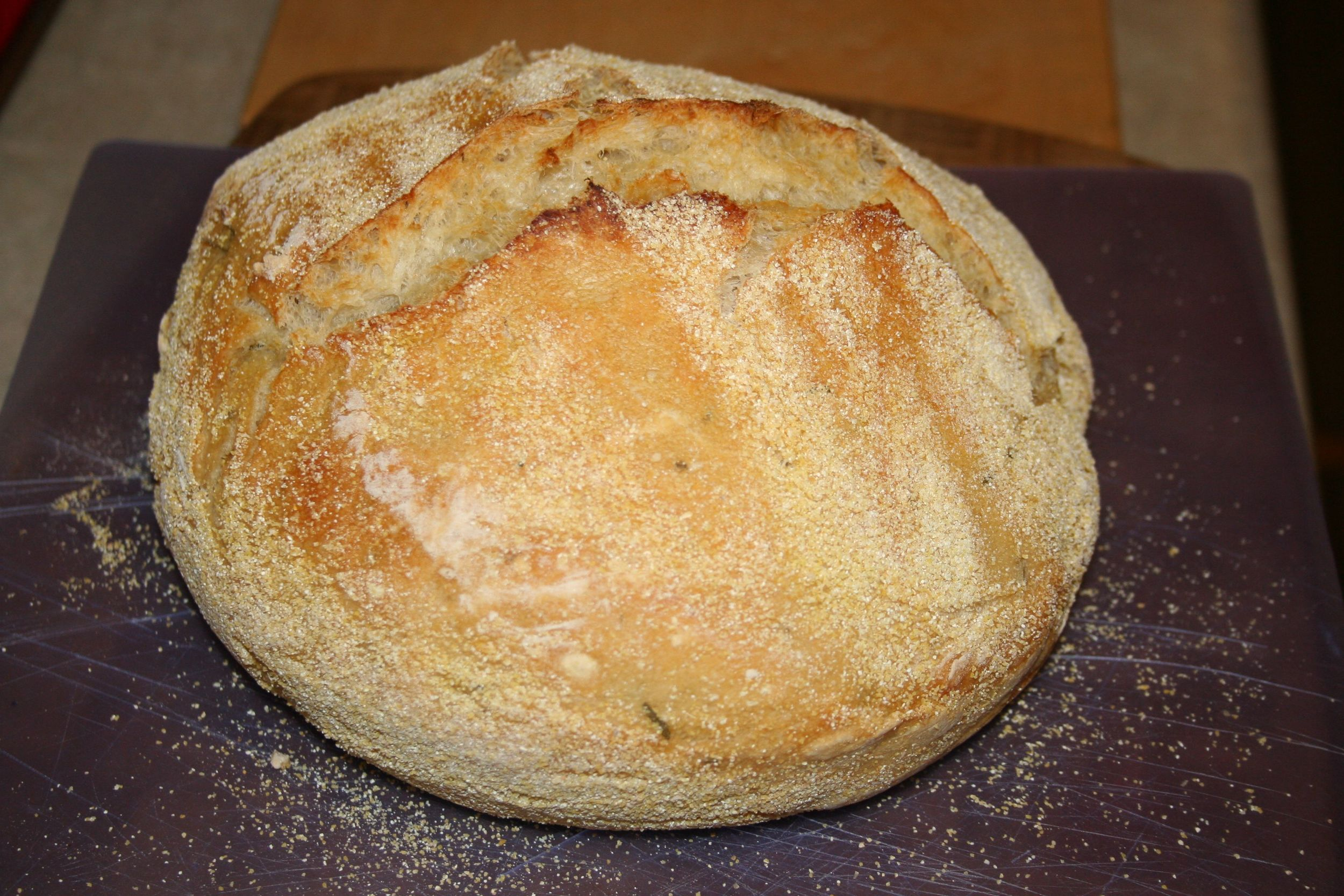 This is the easiest and most amazing tasting home-made bread I have ever tasted!