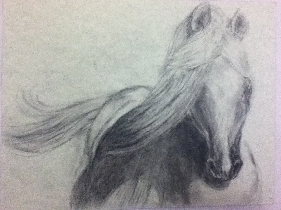 Gorgeous 1, Charcoal on paper.