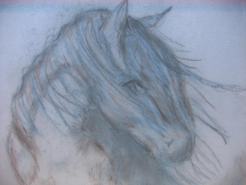 Windblown, Pastel on paper.
