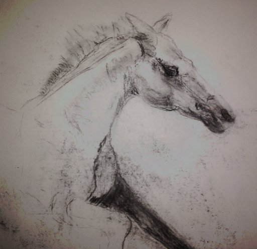 Ink horse.jpg