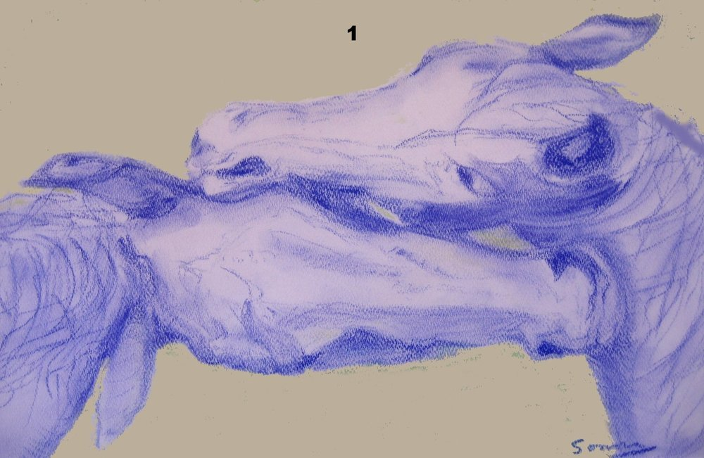 1 - Lovers, Pastel on paper.