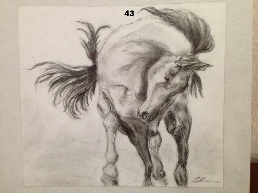 Bucking 3, Charcoal on paper.