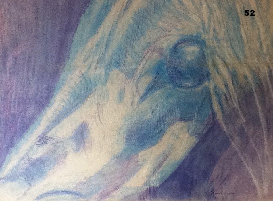 Blue Colt, Pastel on paper.