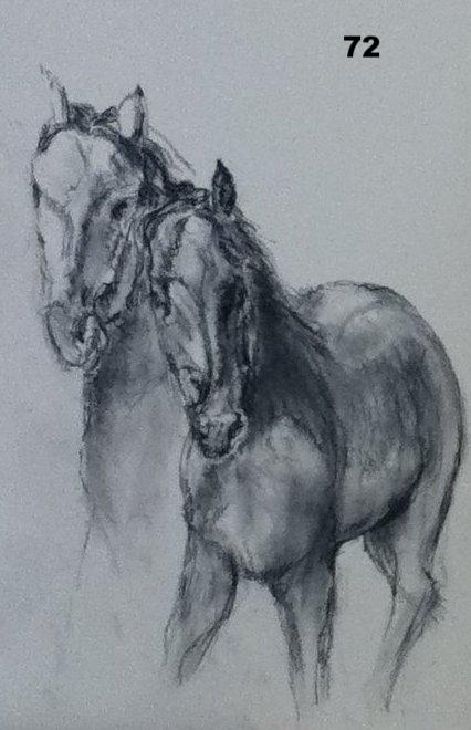 horses two.jpg