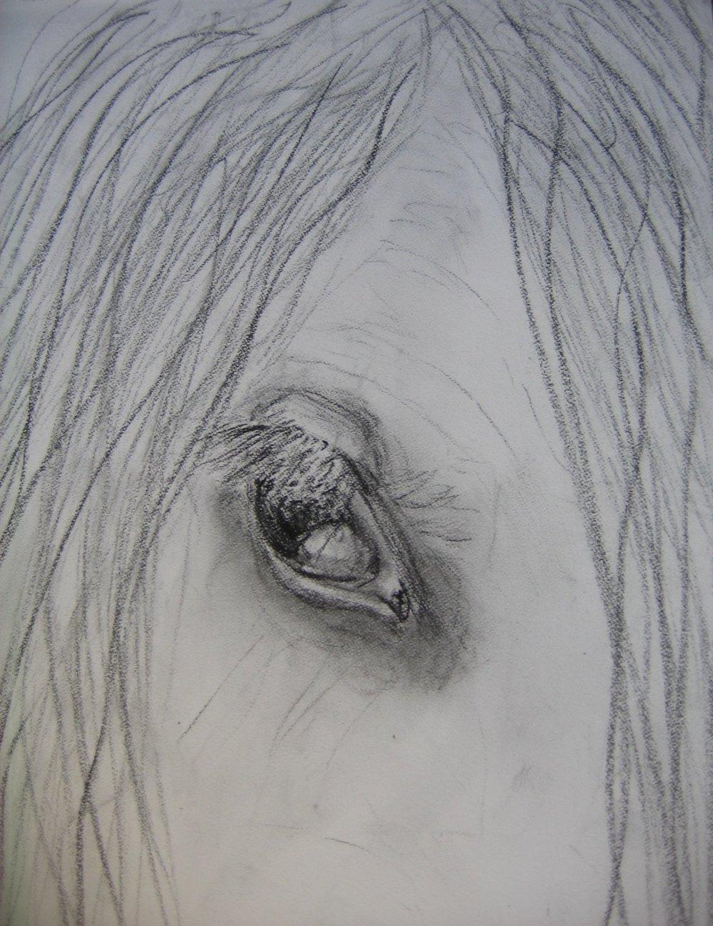 eye detail2.jpg