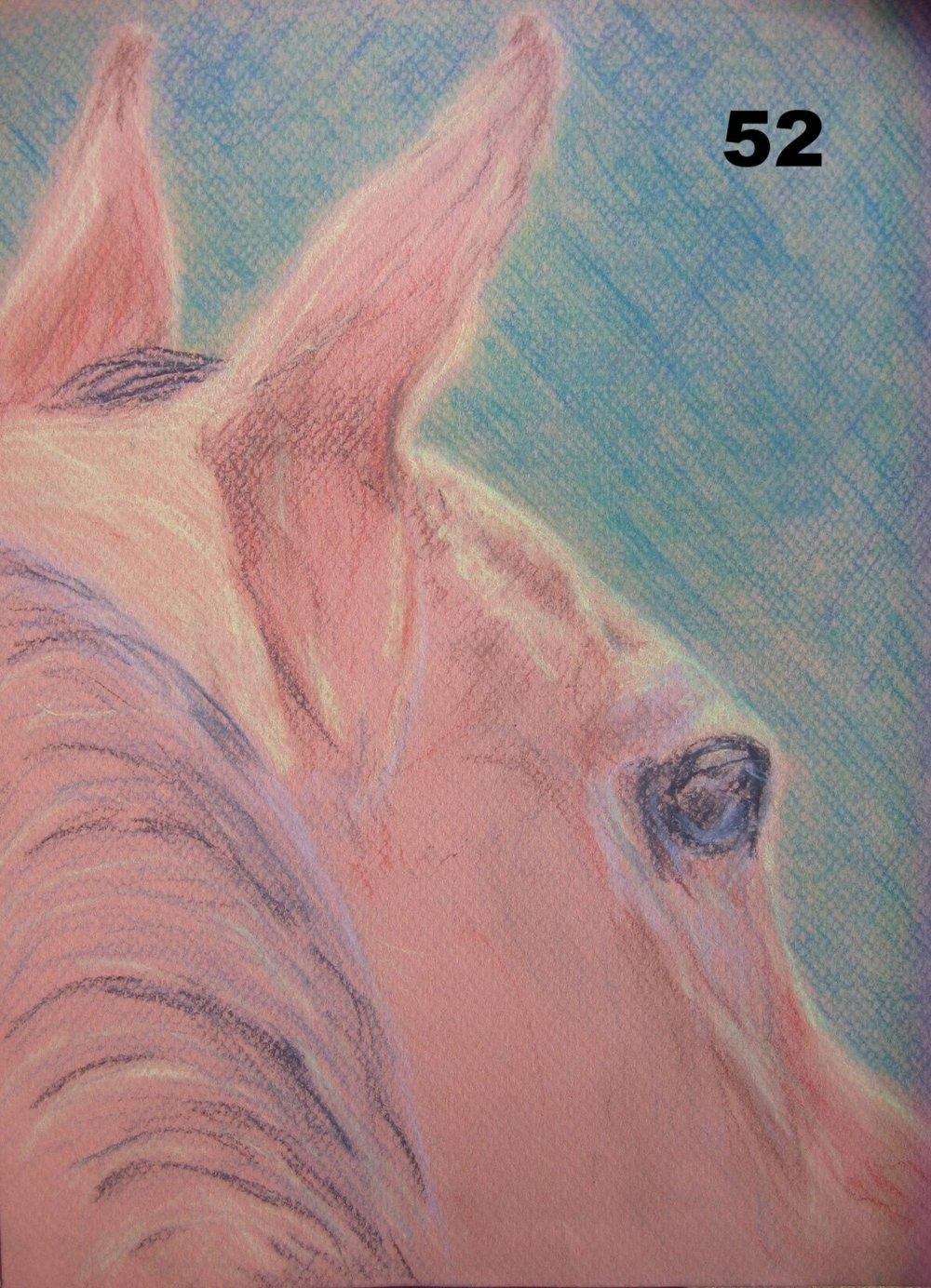 horse head copy.jpg