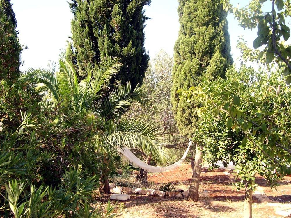 3 acres mediterranean garden