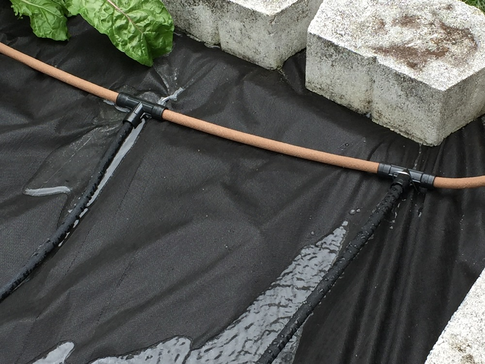 brown hose is a connector hose and does not leak
