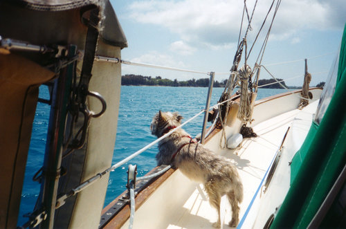 Seaman Scruffy entering St. Georges, Bermuda