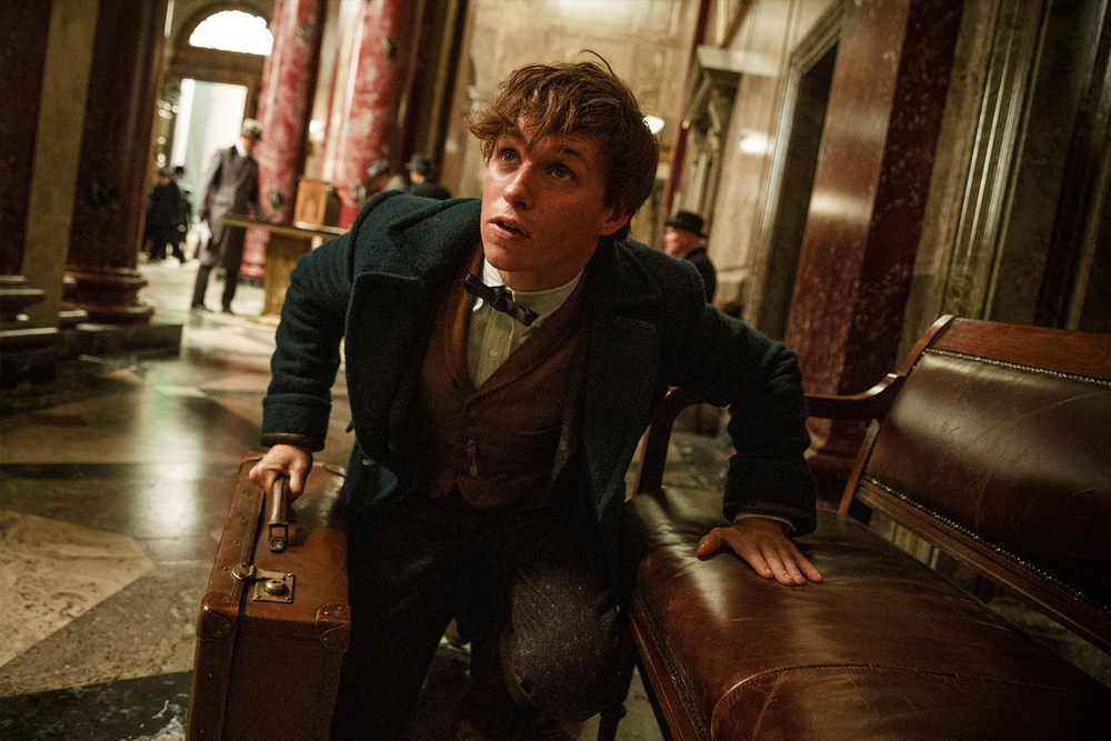 Return To Harry Potter's World in the First Trailer for Fantastic Beasts!