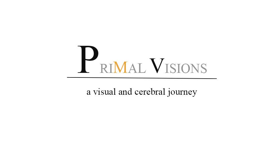 primal-vision-text.jpg