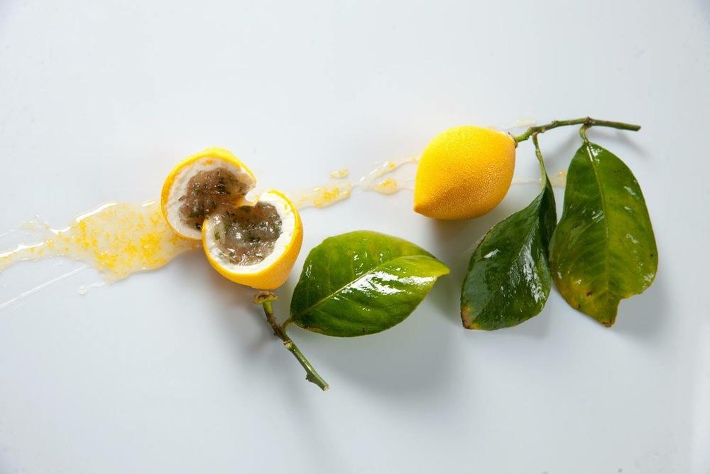 Le Meurice 甜點主廚  Cédric Grolet  的招牌甜點「檸檬」(le Citron)(圖片來源:Cédric Grolet的 Facebook專頁 )