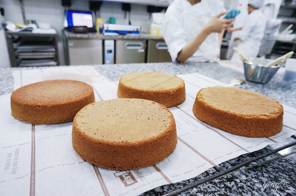 圖3. 烘烤完剛剛脫模的 génoise 海綿蛋糕。