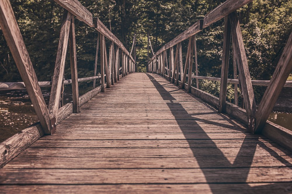 Photo via  pexels.com