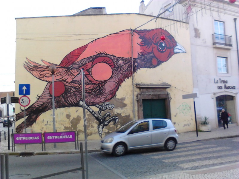 thedailywhat :      This x That:      Above:  Spotted  in Setúbal .      That bird will chew up that car and regurgitate it to her young.