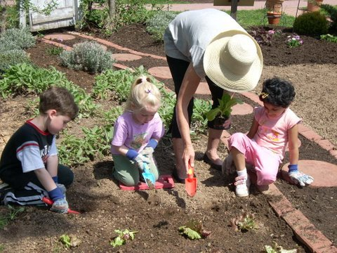 Children planting in the vegetable garden