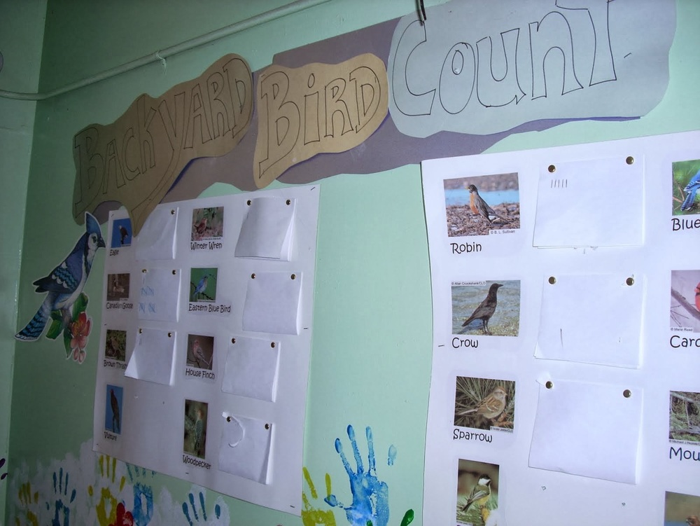 The bird count on the preschool on a farm