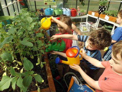Children Watering the plants in the Green House.JPG