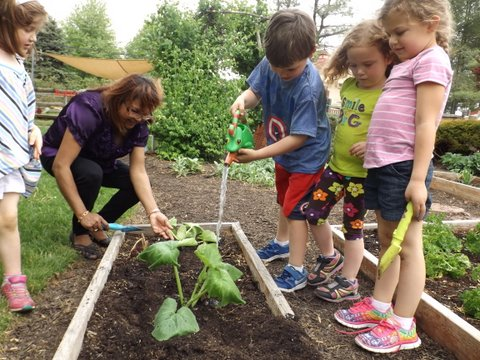 Children watering the plants in the vegetable garden.JPG