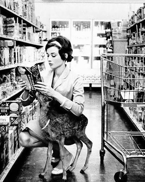 Audrey Hepburn with her deer pippin..getting groceries 😌 sweet dreams