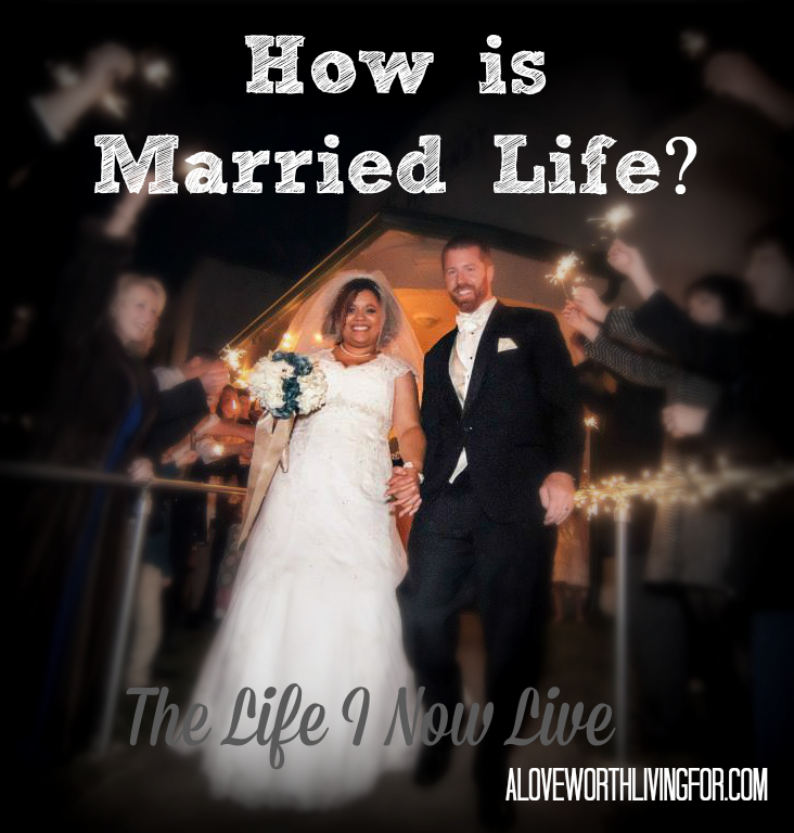 The Honeymoon is Over. So How is Married Life Really? -The Life I Now Live by A Love Worth Living For