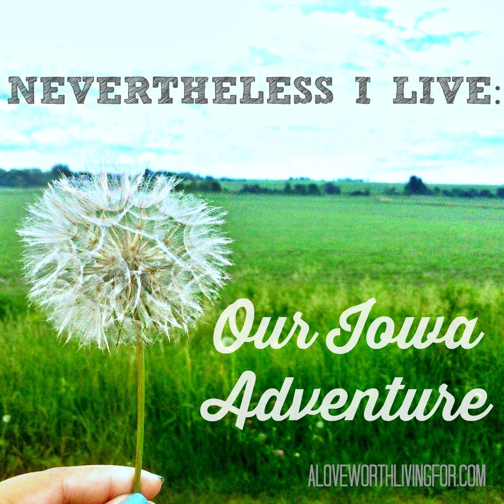 Nevertheless I Live - Our Iowa Adventure We pack up my craft room and loaded our dog into the car and drove 12 hours to Iowa and we had a blast! by A Love Worth Living For