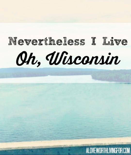 Now that I have had Wisconsin cheese, I don't know how I'll ever go back to shredded cheese in a bag... | Nevertheless I Live: Oh Wisconsin by A Love Worth Living For