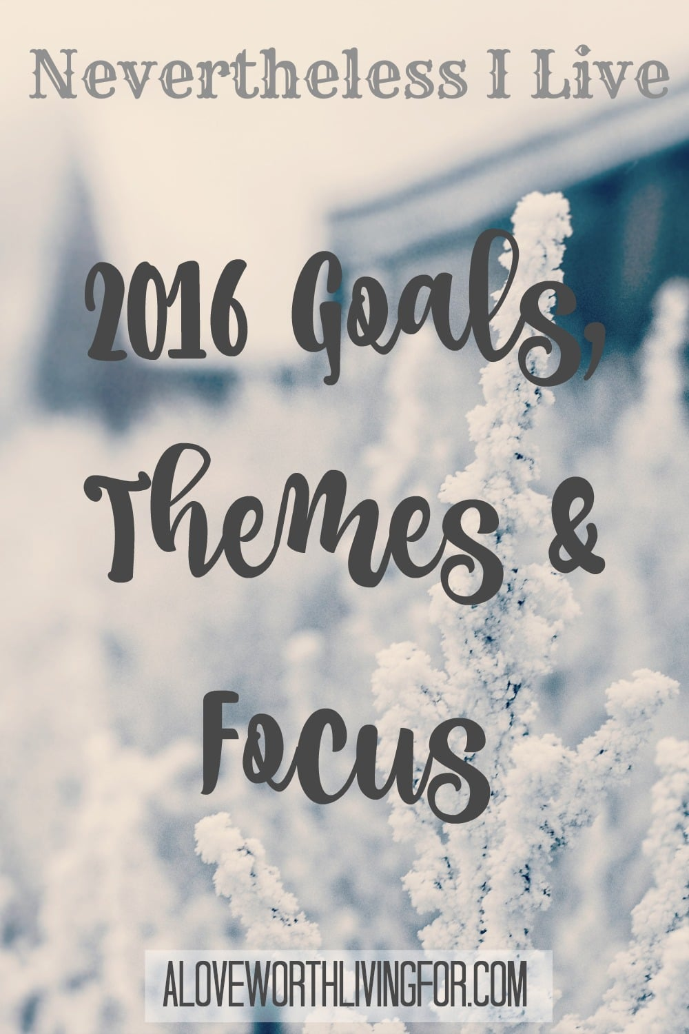 January is a time for new beginning and self reflection. Here are our goals, themes and focuses for 2016!