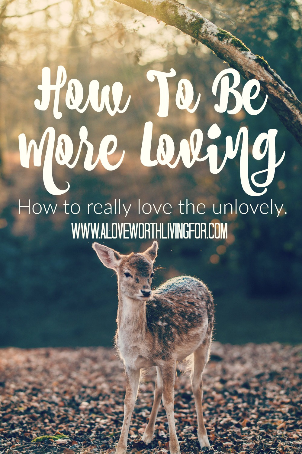 People are difficult and messy. Yet we are told to love others. It's our job to reach out and love the unlovely but how? The answer may surprise you!