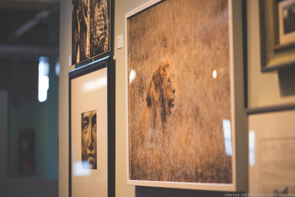 Kalman & Pabst 2016 Fine Art Show -187.jpg