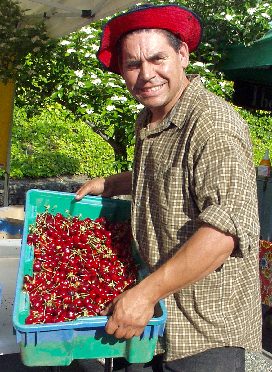 Raul from ACMA Orchards shows of the first of the season cherries just after they arrived, mid-market, on June 3rd. Photo copyright 2009 by Zachary D. Lyons.